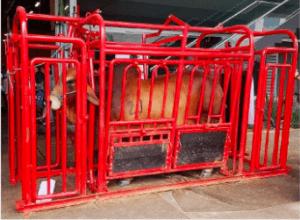 brete para ganado